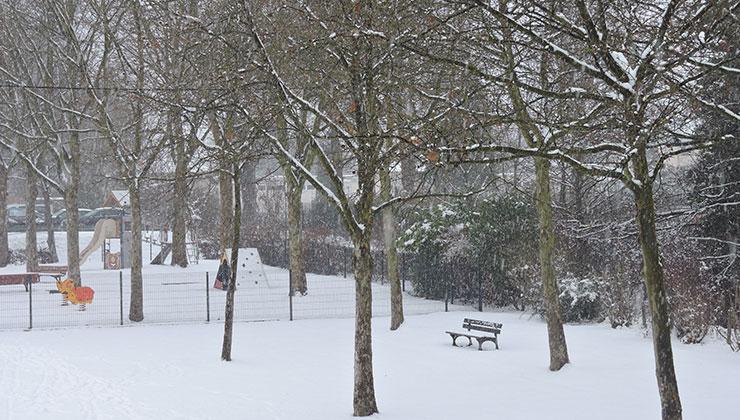 Le  parc sous la neige